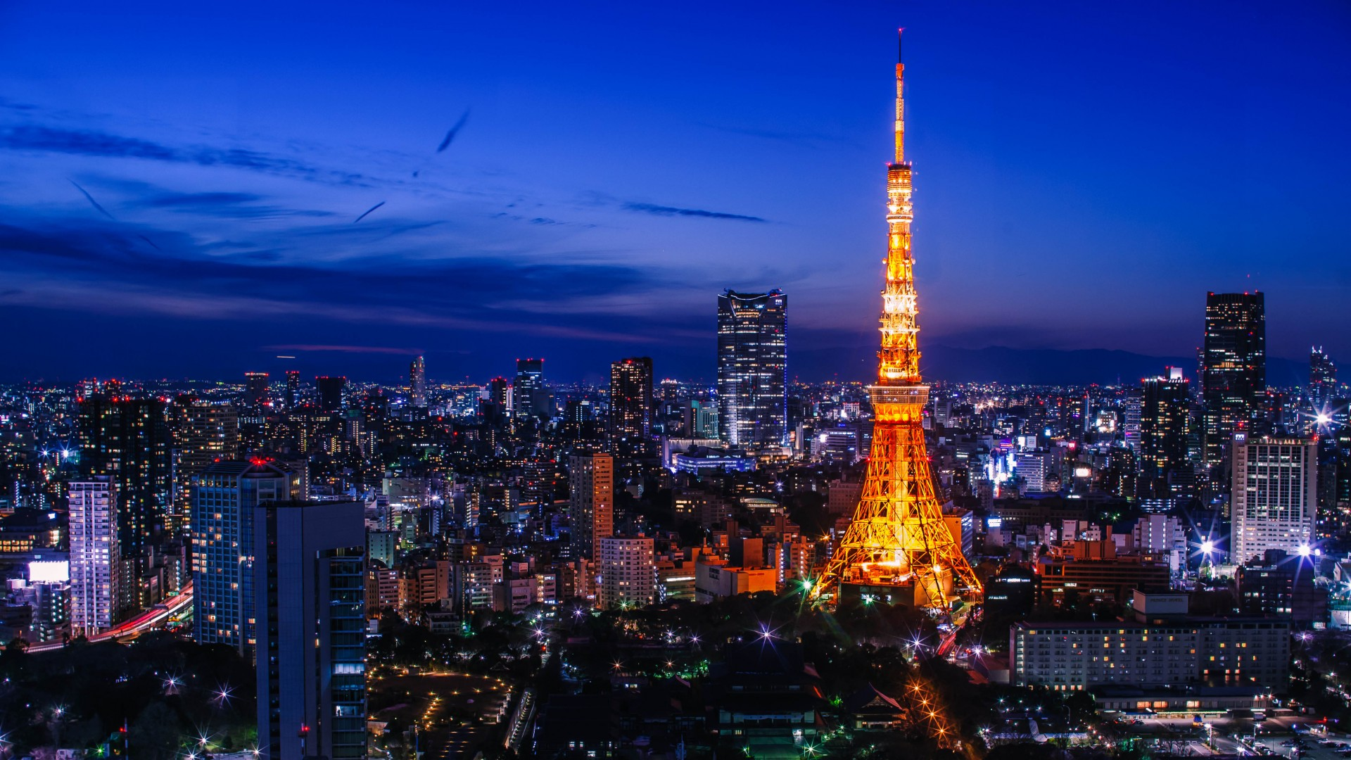 東京 ふるさと納税実績