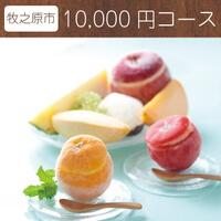 まるごと果実のジェラートアイス 寄附金額10,000円