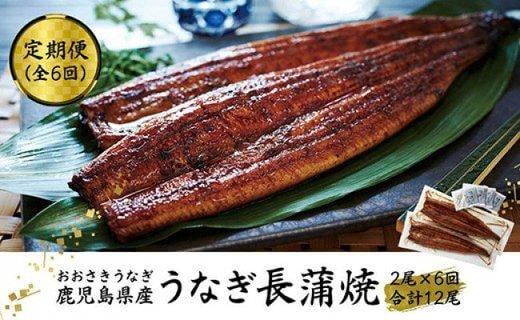 【定期便】おおさきうなぎ鹿児島県産うなぎ長蒲焼2尾(全6回)合計12尾