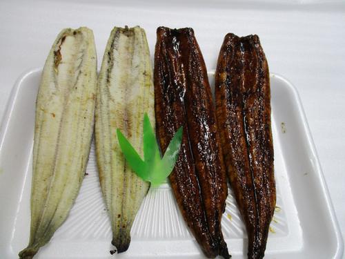 静岡県焼津市のうなぎの返礼品 白焼き