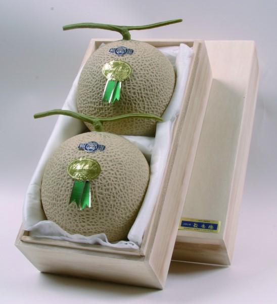 磐田市のメロンの返礼品