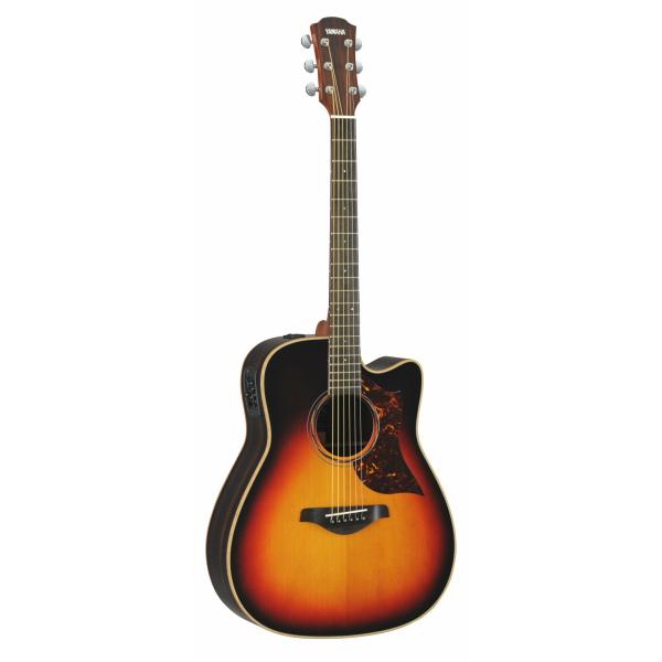 磐田市ギターの返礼品