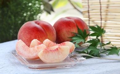 白鳳やあかつきの桃の返礼品