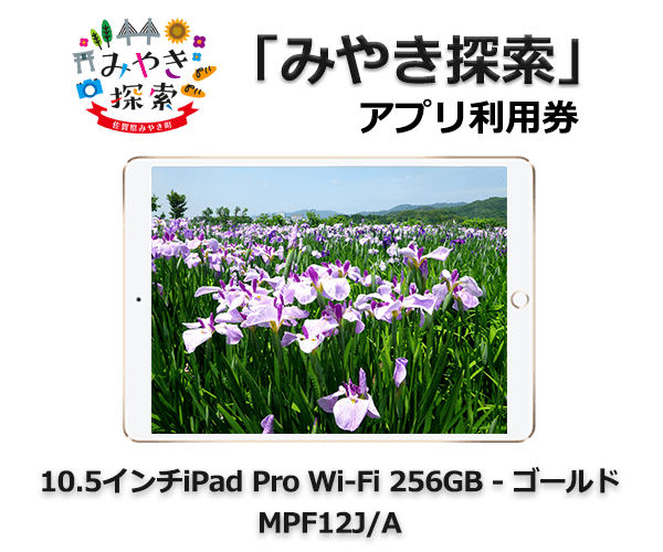 iPad Pro 10.5インチ Wi-Fi 256GB – ゴールド MPF12J/A 寄附金額310,000円 イメージ