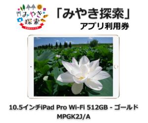 10.5インチiPad Pro Wi-Fi 512GB – ゴールド MPGK2J/A 寄附金額330,000円