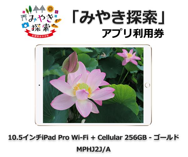 iPad Pro 10.5インチ Wi-Fi + Cellular 256GB – ゴールド MPHJ2J/A 寄附金額360,000円 イメージ