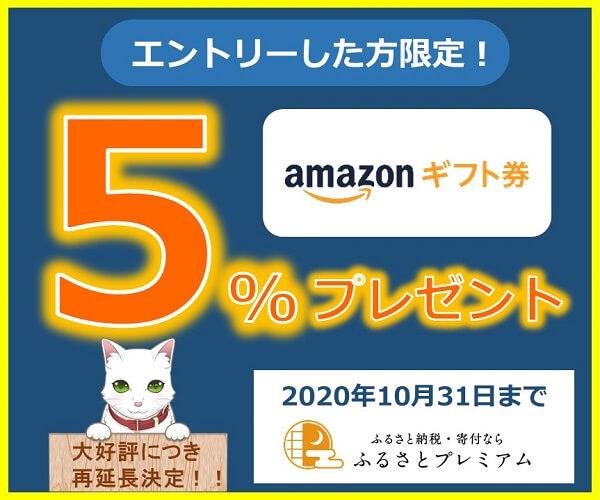 Amazonギフト券が5%もらえるサイト~ふるさとプレミアム~