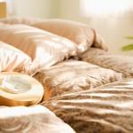 【シモンズも】ふるさと納税で貰える人気のベッドと還元率まとめ