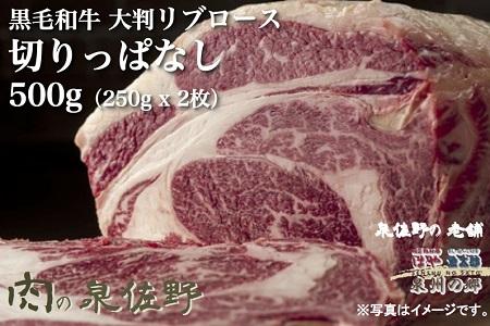 2位:黒毛和牛ロース(大判)切りっぱなし250g×2 寄附金額10,000円 (泉佐野市)