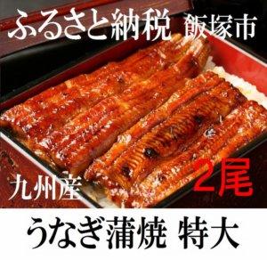 九州産うなぎ蒲焼 特大サイズ2尾 タレ付き 寄附金額10,000円 イメージ