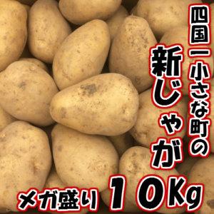 四国一小さな町のじゃがいも。高知県田野町の大野台地で採れた新じゃが10kg 寄附金額8,000円