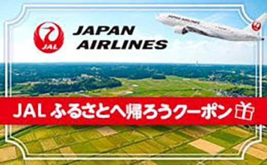 JALふるさとへ帰ろうクーポン 寄附金額10,000円~ イメージ
