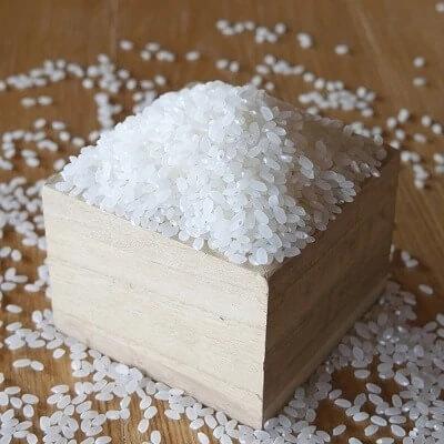 【お米の定期便】鹿児島県産ひのひかり5kg×12か月! イメージ
