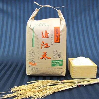 平成30年産 近江米みずかがみ(白米)10kg イメージ