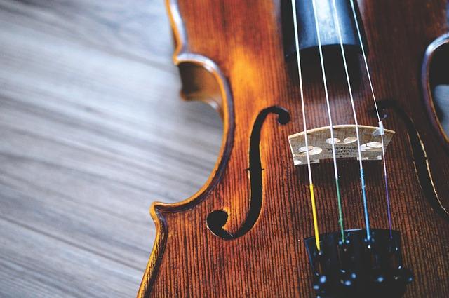恵那 エナバイオリン No.10セットバイオリン 寄附金額170,000円 (福岡県行橋市)