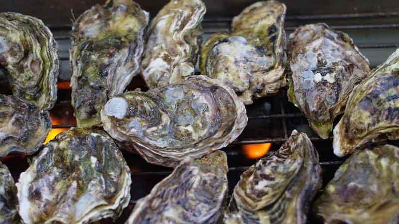 能登穴水の牡蠣(殻付) イメージ