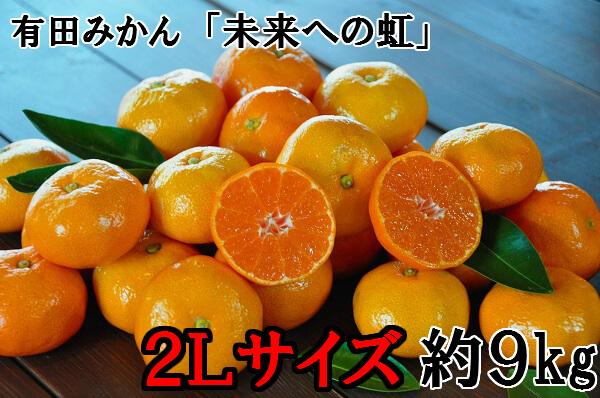 【大粒・2L】有田みかん「未来への虹」(約9kg)
