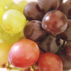 山梨県産:ロザリオ・ピオーネ・甲斐路 三色食べくらべセット