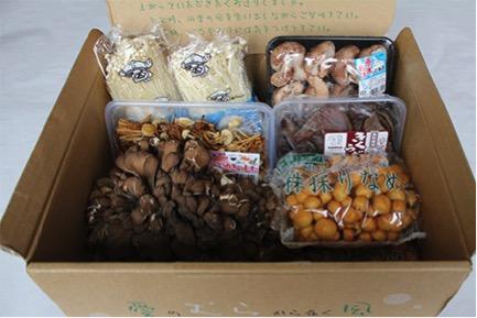 特産きのこ6種詰合せ 寄付金額10,000円(北海道愛別町)
