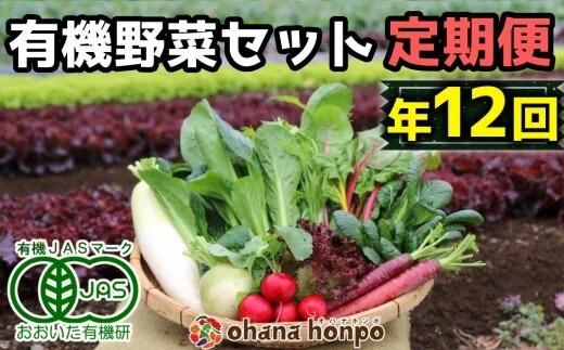 ohanaのオーガニック野菜セット定期便≪年12回コース≫