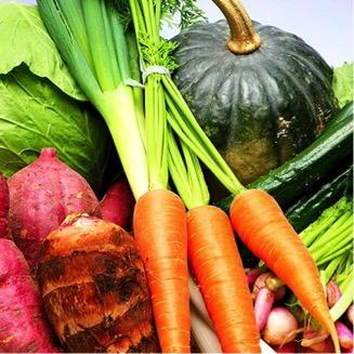 季節の野菜詰め合わせ  寄付金額5,000円 (長崎県松浦市) イメージ
