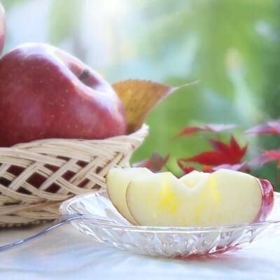 【長野県産】リンゴ(サンふじ)5kg 寄附金額10,000円 (長野県高森町)