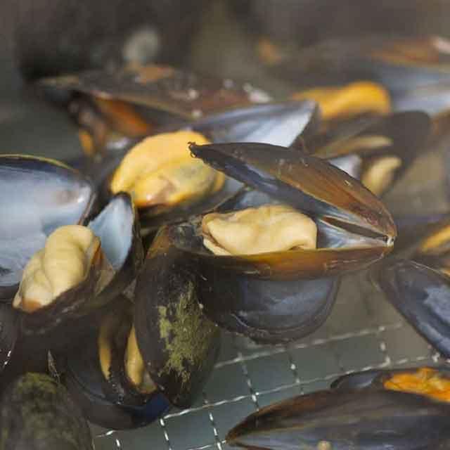漁師の牡蠣&ムール貝カンカン焼きセット 寄附金額20,000円 (宮城県石巻市)