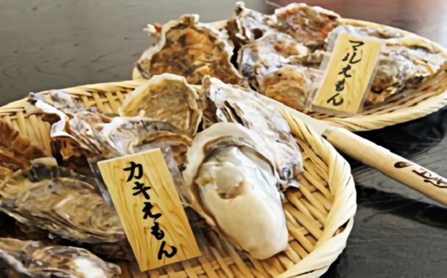 厚岸産『カキえもん』『丸えもん』食べ比べセット 寄附金額10,000円 (北海道厚岸町)