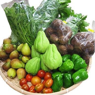 八州高原マルシェ自慢の旬な野菜達
