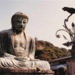 神奈川県 鎌倉市のふるさと納税のご紹介