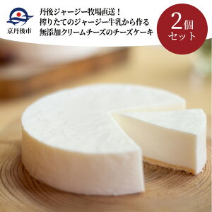 丹後ジャージー牧場直送!搾りたてのジャージー牛乳から作る無添加クリームチーズのチーズケーキ2個セット