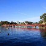 宮城県 松島町のふるさと納税のご紹介