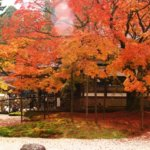 佐賀県 神埼市のふるさと納税のご紹介