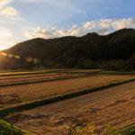 栃木県 芳賀町のふるさと納税のご紹介
