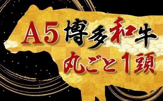 丸ごと1頭!!!【A5】博多和牛~いかがですか?~(800~900kg)