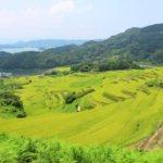 徳島県 上勝町のふるさと納税のご紹介