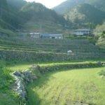 高知県 檮原町のふるさと納税のご紹介