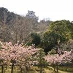 千葉県 館山市のふるさと納税のご紹介