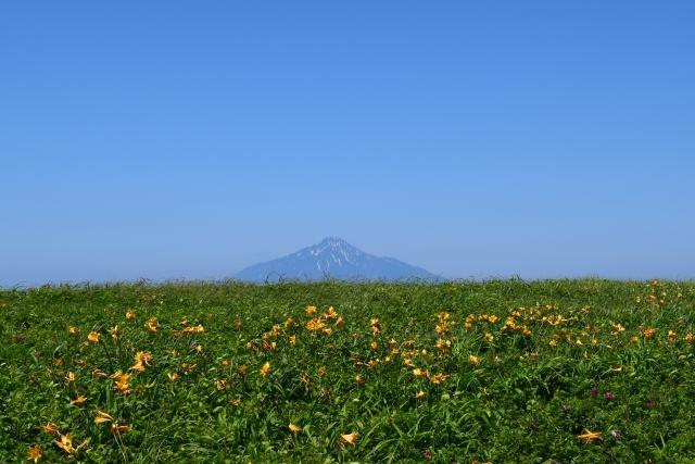 北海道 遠別町のふるさと納税のご紹介 ふるさと納税ナビ♪