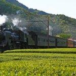 静岡県 川根本町のふるさと納税のご紹介