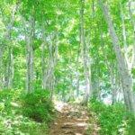 北海道 黒松内町のふるさと納税のご紹介