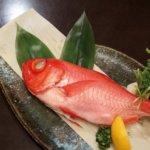 静岡県 東伊豆町のふるさと納税のご紹介