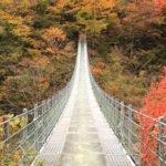 徳島県 三好市のふるさと納税のご紹介