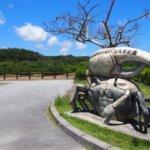 沖縄県 東村のふるさと納税のご紹介