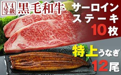 黒毛和牛サーロインステーキ2kg&特上うなぎ12尾(鹿児島県東串良町)