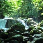 熊本県 菊池市のふるさと納税のご紹介