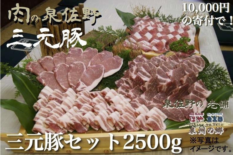 三元豚セット2,500g 寄附金額10,000円 (泉佐野市)