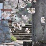 埼玉県 宮代町のふるさと納税のご紹介