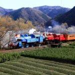 静岡県 島田市のふるさと納税のご紹介