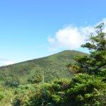 青森県 野辺地町のふるさと納税のご紹介